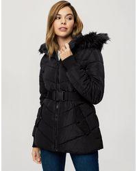 Miss Selfridge Hooded Jacket With Belt - Black