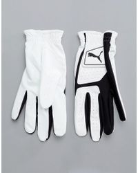 PUMA Golf Synthetic Leather Glove In White 4135201 - Black
