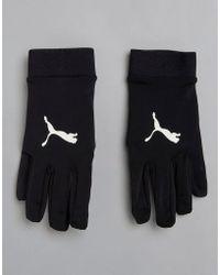 PUMA - Soccer Field Player Gloves In Black 04114601 - Lyst