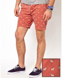 ASOS Chino Shorts With Zebra Print - Red