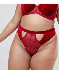 4e2c1a74d250f ASOS - Asos Design Curve Emma Velvet & Lace Thong - Lyst