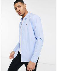 Hollister – Langärmliges, schmal geschnittenes Oxford-Hemd mit Logo und Knopfleiste - Blau