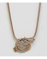 Steve Madden - Gold Snake Necklace - Lyst