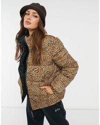 BB Dakota Cool Kitten Reversable Puffer Coat - Brown