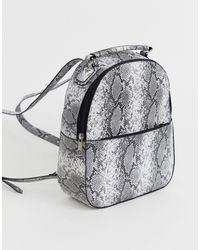 Chateau And White Snake Print Backpack - Black