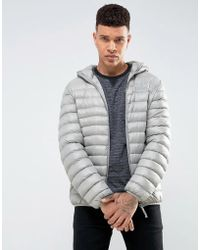 Tokyo Laundry | Hooded Padded Jacket In Sheen | Lyst
