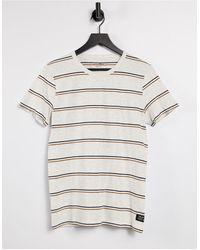 Tom Tailor T-shirt In Multi Stripe In White