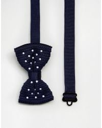 ASOS - Polka Dot Bow Tie In Navy - Lyst