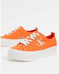 Calvin Klein Ярко-оранжевые Кроссовки Jeans Zolah-оранжевый