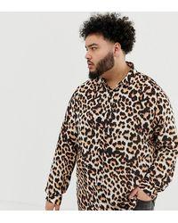 ASOS Plus - Regular-fit Overhemd Met Luipaardprint - Bruin