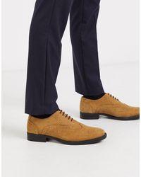 Redfoot Tan Suede Oxford Brogue Shoe - Multicolour