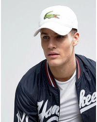 Lacoste - Casquette de baseball avec grand logo - Blanc - Lyst