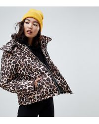 NA-KD - Leopard Print Padded Jacket In Brown - Lyst