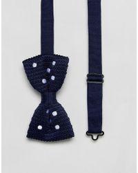 ASOS - Polka Dot Bow Tie In Navy - Lyst