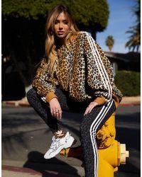 adidas Originals Oversized-свитшот С Леопардовым Принтом -коричневый Цвет