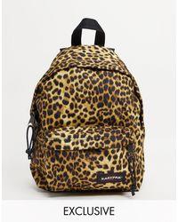 Eastpak Коричневый Рюкзак С Леопардовым Принтом Orbit – Эксклюзивно Для Asos-коричневый Цвет