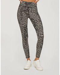 Miss Selfridge Animal Print leggings - Black