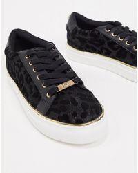Lipsy Verni Noir Tassel Loafers Chaussures Taille Britannique 4 neuf avec boite