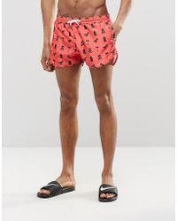 Abuze London Printed Short Swim Shorts - Red
