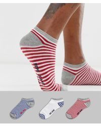 Pepe Jeans Shoe Liner Sock 3 Pack - Multicolour