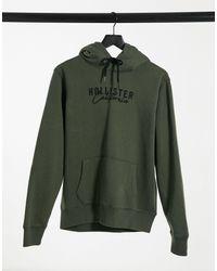 Hollister Hoodie à logo écrit sur le devant avec doublure en imitation peau - Vert