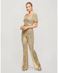 Miss Selfridge Pantaloni a zampa con paillettes oro - Metallizzato