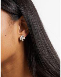True Decadence Stud Earrings - Metallic