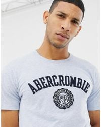 Abercrombie & Fitch Chest Applique Logo T-shirt In Blue Marl