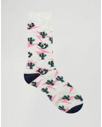 Urban Eccentric Cactus Socks - Gray