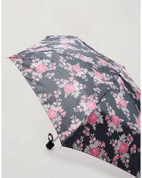 Miss Selfridge Черный Зонтик -черный Цвет