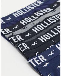 Hollister Набор Из 5 Боксеров-брифов (черные/синие/серые/белые) -многоцветный - Синий