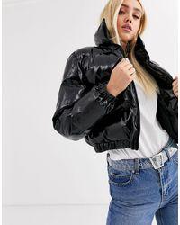 PrettyLittleThing Cropped Padded Jacket - Black