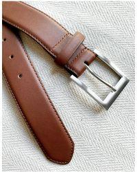 New Look Smart Belt - Multicolor