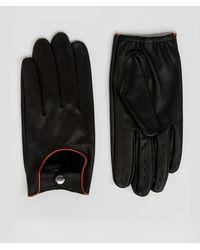 Barneys Originals Barneys Driving Gloves In Black
