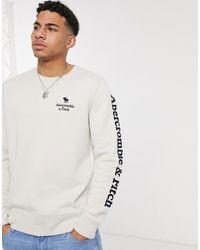 Abercrombie & Fitch Applique Icon Crew Neck Sweatshirt - Multicolour