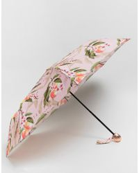 Ted Baker Compact Umbrella In Peach Blossom Print