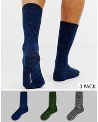 Ben Sherman 3 Pack Sock - Multicolour