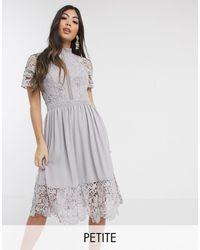 Chi Chi London Серое Короткое Приталенное Платье С Кружевом -серый