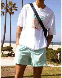 adidas Originals Шорты Для Плавания Очень Светлого Мятно-зеленого Цвета 'summer Club'-зеленый Цвет