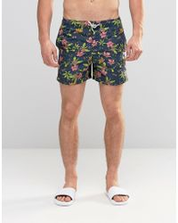Bellfield - Tropical Print Swim Shorts - Lyst