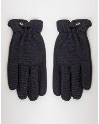 Paul Costelloe - Перчатки Из Натуральной Кожи -черный Цвет - Lyst