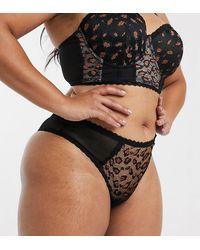 Simply Be Lace Brazilian Brief - Black