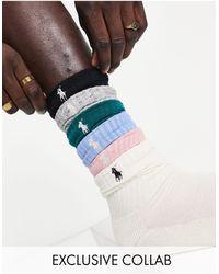 Polo Ralph Lauren Pack - Multicolor