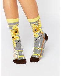 Blue Q - Sunshiny Ass Socks - Multicoloured - Lyst