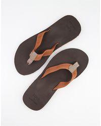 TOMS Lagoon Flip Flops - Brown