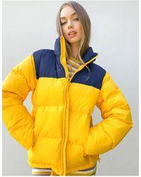 Lacoste Abrigo acolchado amarillo con diseño colour block