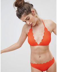 Warehouse - Scallop Edge Bikini Briefs - Lyst