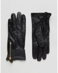 Oasis Real Leather Gloves With Patch Detail - Black