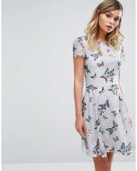 Oasis - Butterfly Lace Dress - Lyst