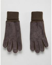 Dents - Northumbria Suede Gloves With Knitted Cuff - Lyst